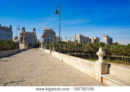 Valencia Puente pont del Mar bridge in Spain