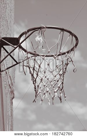 Basketball basket and net on the grey background