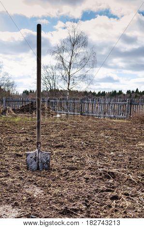 A shovel on a country plot on a patch of land