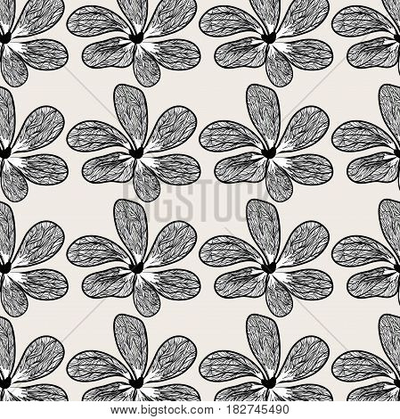 beautiful flower with petals botany plant background, vector illustration