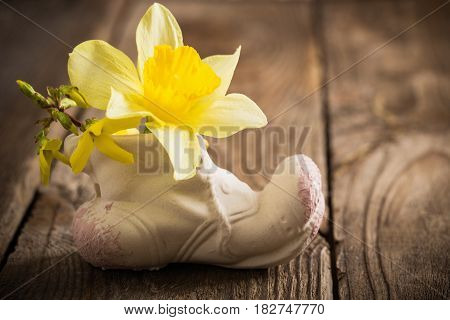 the spring flowers on old wooden background