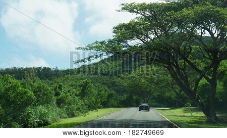 Jungle drive, Saipan Relaxing drive to Marpi, north end of Saipan, Northern Mariana Islands