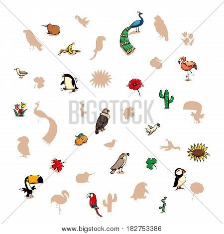 Fun Visual Game: Find the right mirror shadow of each item. Theme: Birds. Illustration is in eps10 vector mode elements are isolated.