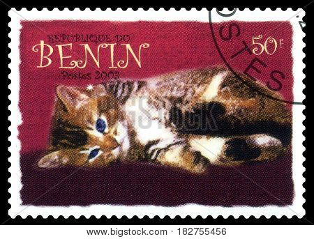 STAVROPOL RUSSIA - April 21 2017: A stamp printed in Benin shows house Kitten series circa 1979