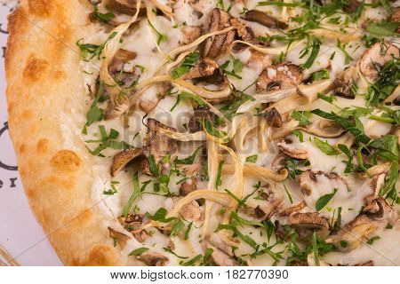Piece of mushroom pizza with cepes, oyster mushrooms, champignons and cheese sauce