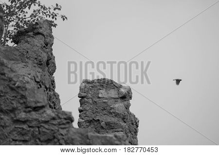 Beautiful Castel Belfort Ruin In Italy