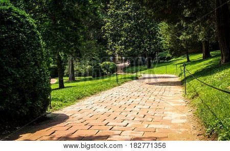 Pathway at farm in the between the woods