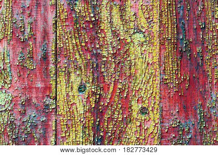 Texture of old painted board Wooden backgrouns