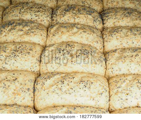 Closeup Of Proofed Unbaked Rolls With Poppy Seeds