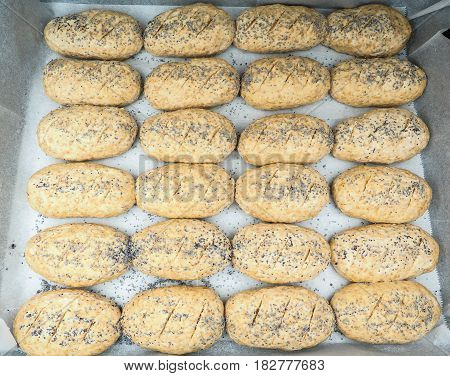 Group Of Plated Whole Grain Rolls With Poppy Seeds Unbaked On Baking Paper