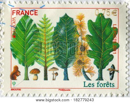 GOMEL, BELARUS, APRIL 20, 2017. Stamp printed in France shows image of  The forests, circa 2000.