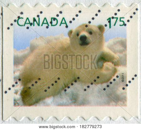 GOMEL, BELARUS, APRIL 21, 2017. Stamp printed in Canada shows image of  The polar bear (Ursus maritimus) is a carnivorous bear whose native range lies largely within the Arctic Circle, circa 2011.