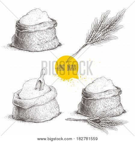 Hand drawn sketch style set of sacks with whole flour and wheat bunch isolated on white background. Bag with sugar flour sack with wooden scoop wheat sheaf.