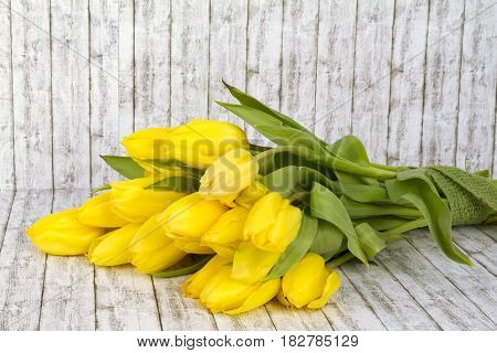 Beautiful yellow tulips on structure background. Shot in Studio