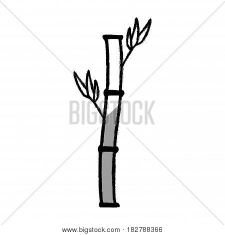bamboo branch isolated icon vector illustration design