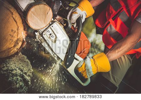Gasoline Saw Wood Logs Cutting by Caucasian Worker.