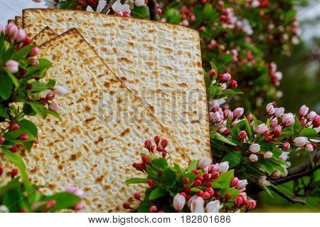 Background With Matzo And For Jewish Passover Celebration