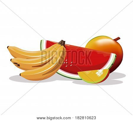 mango banana watermelon fruit fresh harvest vector illustration eps 10