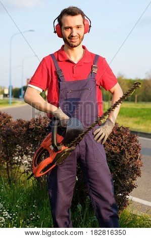 Professional Gardner  Using An Hedge Trimmer