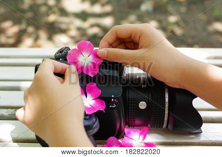 DONG NAIVIETNAM - April 16 2017 : Young girl hand is decorating flower for Pentax medium format camera
