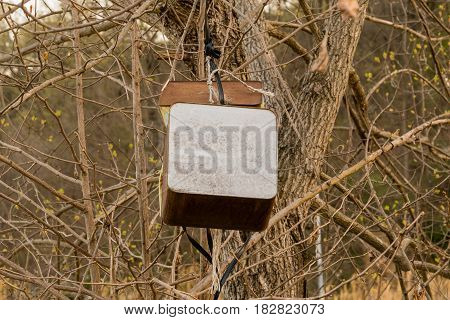 Large rusty metal boxes hanging in tree in a woodland area in South Korea.