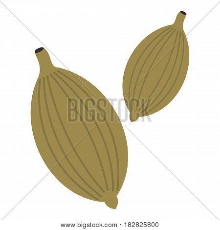 Green cardamom pods icon flat isolated on white background vector illustration