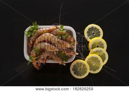 Crustaceans On Black Background