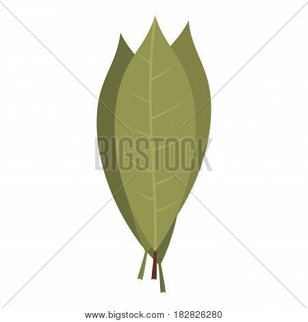 Bay laurel leaves icon flat isolated on white background vector illustration