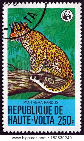 BURKINA FASO - CIRCA 1979: a stamp printed in Burkina Faso shows Leopard Panthera Pardus Big Cat circa 1979