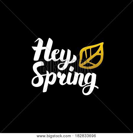 Hey Spring Handwritten Calligraphy. Vector Illustration of Lettering Nature Design Element.