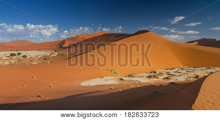 Panorama of the dune landscape at Sossusvlei Namibia Africa