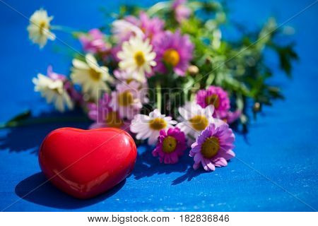heart on blue background with margarites, love