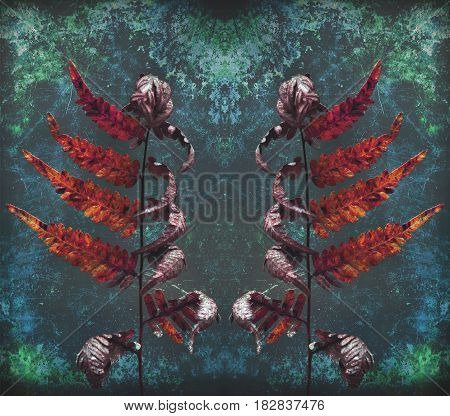 Abstract curled fronds of a dying bracken fern in the forest. Gothic, grunge style textured digital photo manipulation.