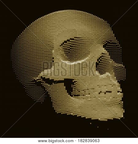 Vector skull constructed with random numbers. Internet security concept illustration. Virus or malware abstract visualization. Hacking big data image.
