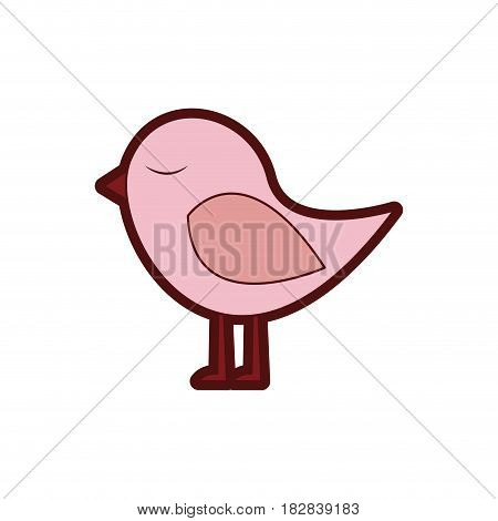 colorful thick silhouette with cute bird vector illustration