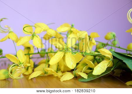 Blur and soft focus for background, apparatchik flowers, Golden shower or Cassia fistula beautiful background