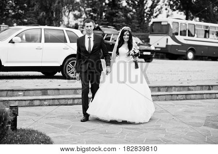 Wedding Couple Moving To The Restaurant Against Cortege Cars.