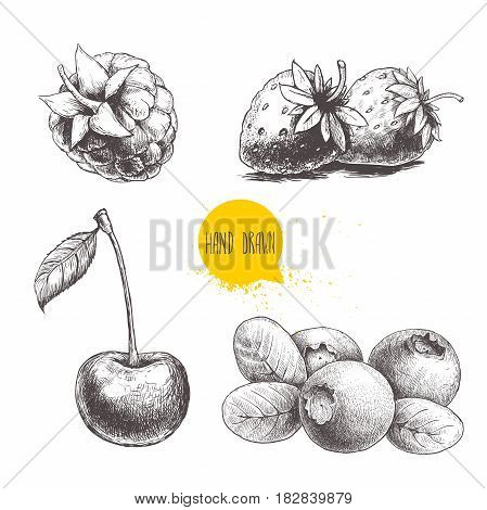 Hand drawn sketch style berries set isolated on white background. Raspberry strawberry cherry and blueberry.Eco berries vector illustration.
