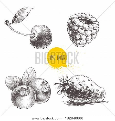 Hand drawn sketch style berries setisolated on white background. Raspberry strawberry cherry and blueberry. Healthy fruit and berry vector illustration.