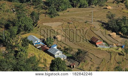 Rice paddy and farmhouses in the Annapurna Conservation Area Nepal. Scene near Bhulbhule.