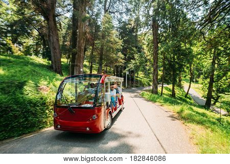 Batumi, Adjara, Georgia - May 27, 2016: Tourist Waving His Hand From A Passing Electric Car For Exploring And Sightseeing Of The Botanical Garden. Tour In Sunny Summer Day