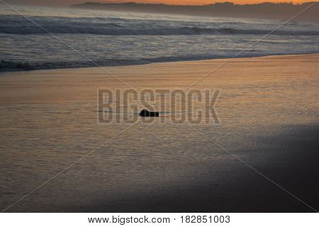 Solitary stone in the sunset on the beach.