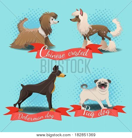 Cartoon different dog breed set. Chinese crested chinese crested powder puff pug dog doberman dog.