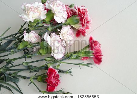 Bunch of fresh pink carnations on a light tablecloth. Horizontal format. Cut beautiful spring flowers. Mother's Day background. Top view. Holiday and seasonal design. Greeting card and copy space.