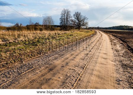 Country Road With Perspective