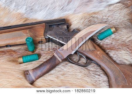hunting gun and  knife lay on the skin of a Fox