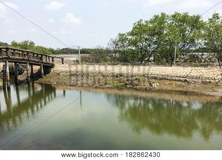 River Scenery In Mekong Delta, Vietnam