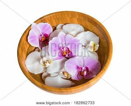 Bowl of orchids floating in water isolated on white background