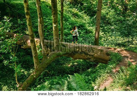 Batumi, Adjara, Georgia - May 27, 2016: Woman Tourist Is Standing On A Fallen Tulip Tree During Sightseeing Tour Of The Botanical Garden In Sunny Summer Day