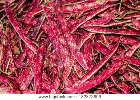 Slender red beans (haricot) close up food